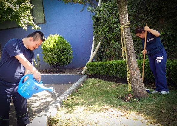 Personal con discapacidad intelectual dando mantenimiento a un jardín